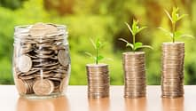 Coins in a jar with plants growing